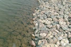 石笼网的优秀特性让它广泛应用于水利生态治理工程