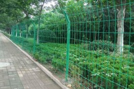 保护植物和种植果园花园的围栏网用哪种最合适?