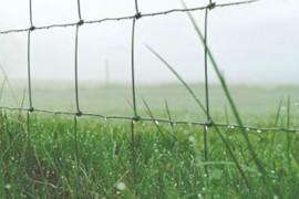 草原牛栏网 草场围栏网